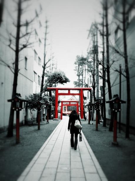 torii : shinjuku